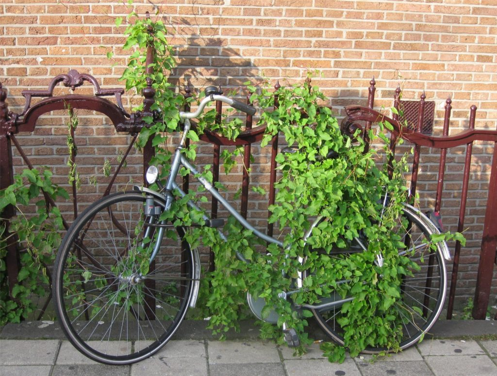 green-bike-lock-amsterdam